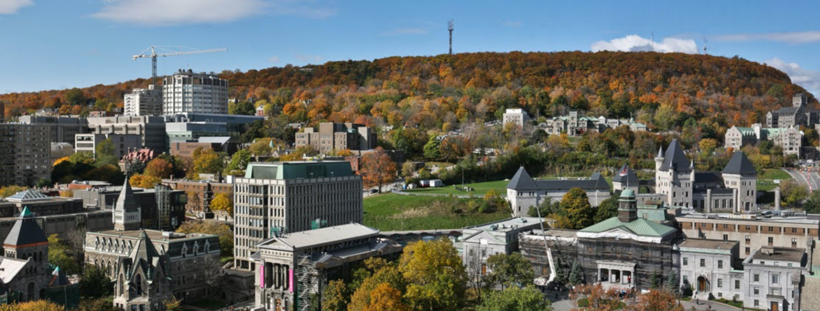 Six McGill researchers awarded more than $59M by CFI and Quebec